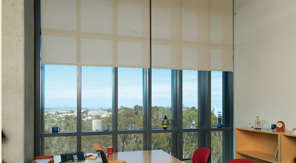 Office Commercial Window Shades Work Well With The Clean Lines Of This While Providing Light